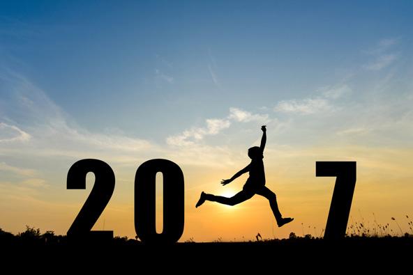 היעדים המבטיחים לשנת 2017