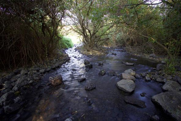 הגליל העליון: טיולים ליד מים