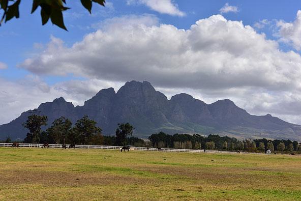 עשרת הגדולים של דרום אפריקה שאסור להחמיץ