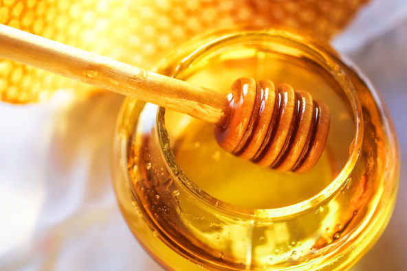 ביקור בכוורת – על דבורים ודבש