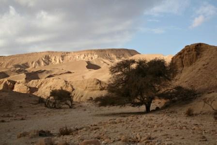 שביל ישראל: נחל רחם – עין נטפים (מסלול 26)