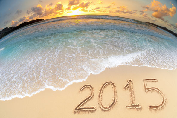 היעדים המבטיחים ל-2015
