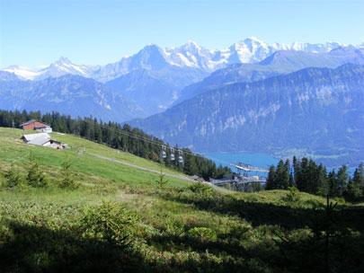 שווייץ: אגם טון – עוד יותר ירוק