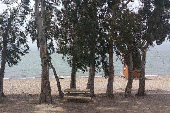 חוף גופרה – נופש חופים בכנרת
