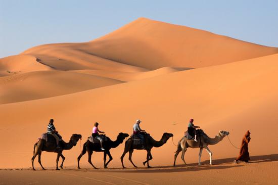 12 סיבות טובות לנסוע למרוקו
