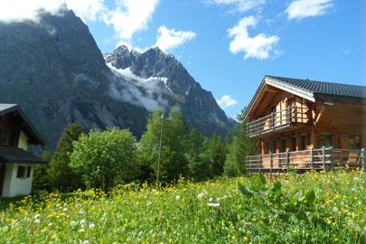 חופשה בטבע השוויצרי: כל כך ירוק שבא לבכות