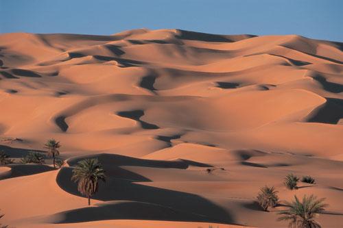 לוב – ביקור במדבר סהרה