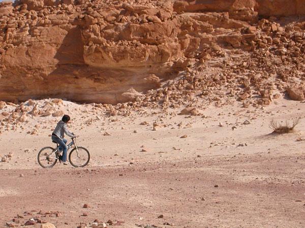 הערבה הדרומית: חורף בעמק האדום
