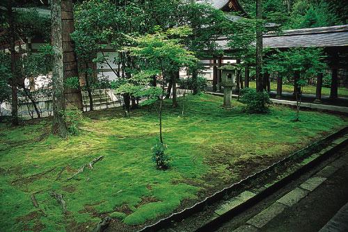 גנים יפניים: ההתבוננות והחווייה