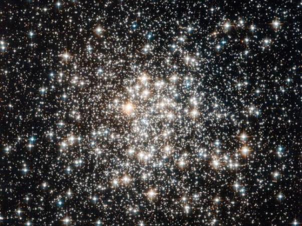 שדה של כוכבים קשישים