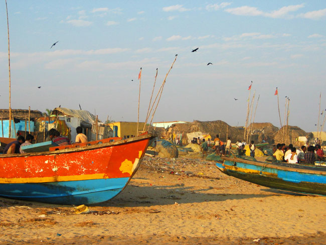צונאמי: זכרונות מהבית בהודו