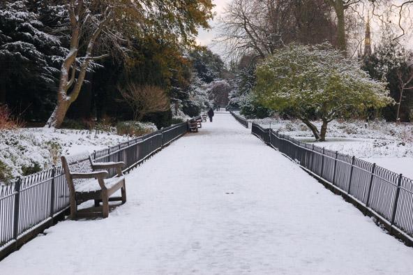 קסם חורפי: גני קנזינגטון בשלג