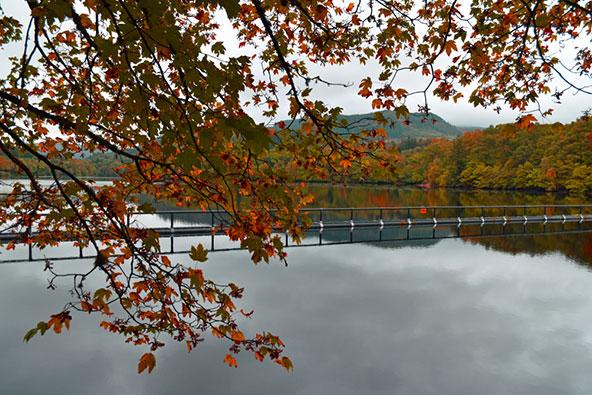 צבעי שלכת מקסימים ליד אגם פאסקאלי בסקוטלנד