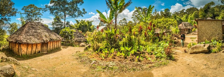 פפואה ניו גיני - המדריך המלא לטיול לפפואה ניו גיני