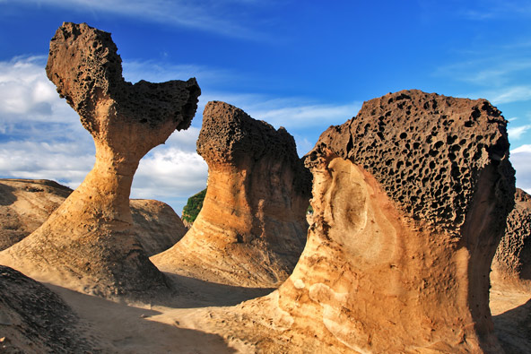 סלעים בצורות שמסעירות את הדמיון בשמורת ייליו בצפון המדינה