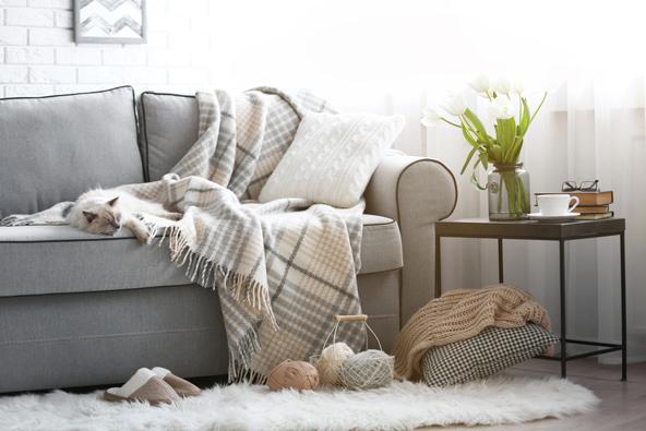 קאוצ'סרפינג: לינה חינם לגולשי הספה