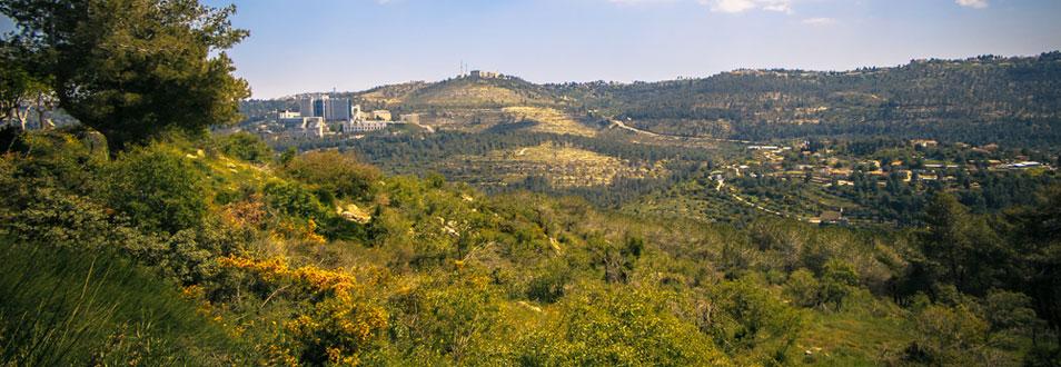 הרי ירושלים - המדריך המלא לטיול להרי ירושלים