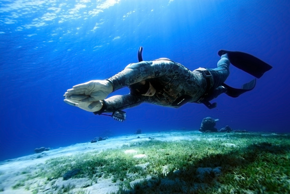 צלילה חופשית ויוגה בזנזיבר