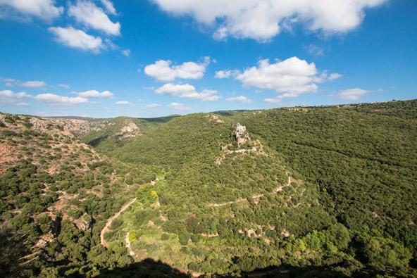 דרכי הנוף היפות בישראל