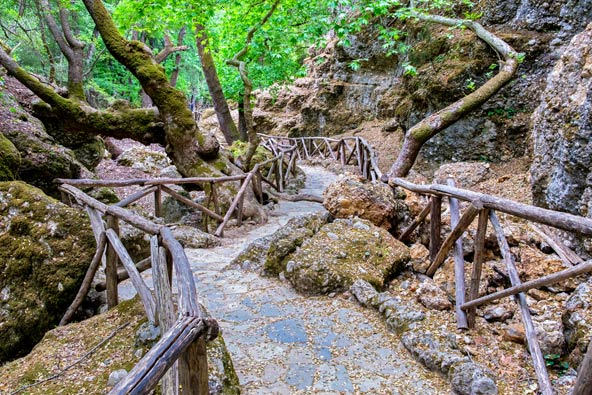 שביל הליכה בעמק הפרפרים, שמורת טבע מוצלת ושופעת מים