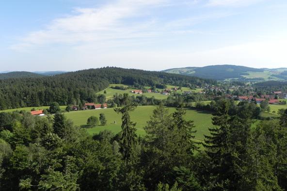 היער הבווארי: היעד החדש לטיולי משפחות