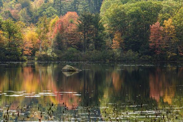 שלכת בניו אינגלנד – כתבה מצולמת