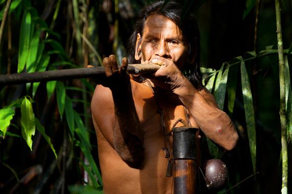 ציד משבט ההווארני ביערות הגשם של אקוודור