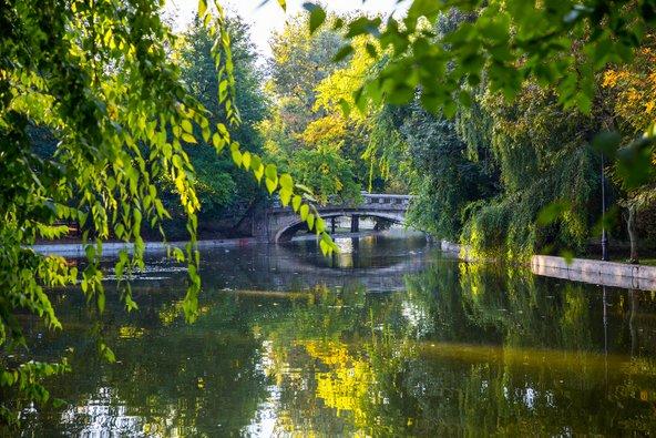 האגם בפארק צ'ישמיג'יו. פינת חמד ירוקה