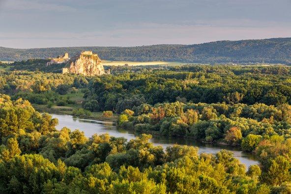 שרידי מצודת דווין מוקפים בנוף ירוק