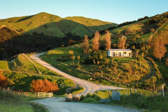 חוות רבות בניו זילנד מחפשות ידיים עובדות תמורות לינה וארוחות