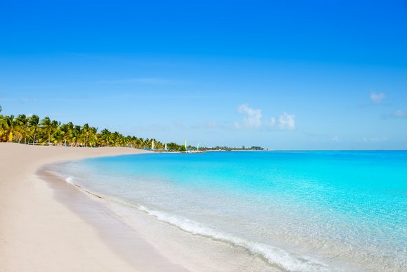 חוף טרופי בפלורידה קיז