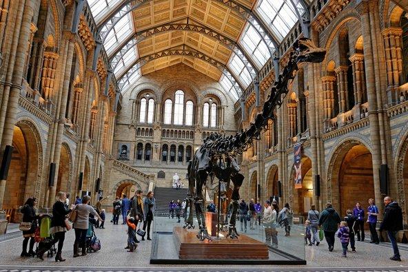 המוזיאון להיסטוריה של הטבע. בילוי מושלם ליום גשום | צילום: Pen_85 / Shutterstock.com