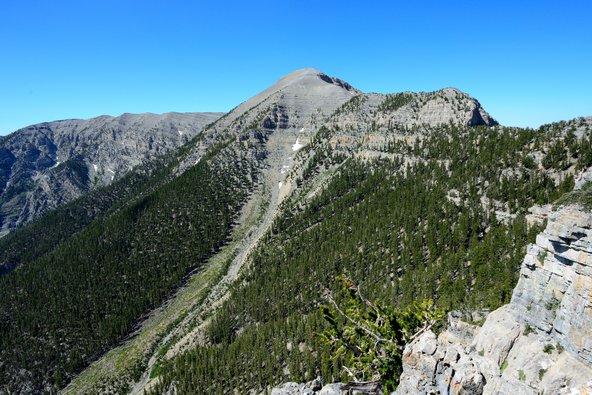 הר צ'רלסטון. מושלם כשרוצים לראות ירוק בעיניים