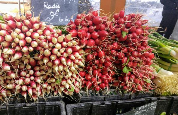 צנוניות בשוק של אנטיב | צילומים בכתבה: רותם בר כהן