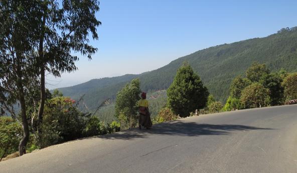 הדרך לפסגת הר אנטוטו, המתנשא מצפון לאדיס אבבה