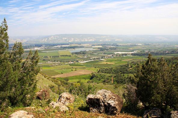 תצפית יפה על בקעת הירדן מיער מנחמיה