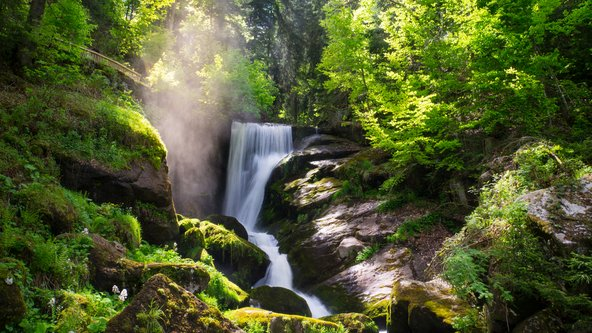 מפלי טריברג, מפינות החמד היפות ביער השחור