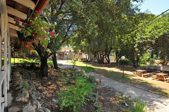 המלון מוקף בצמחייה ירוקה, פרחים ומדשאות - מושלם לרגיעה אחרי יום של טיולים