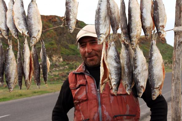 דגים תלויים לייבוש ליד אגם סוואן