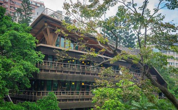 בניין העץ האקולוגי המוקף צמחייה של ספריית בייטו | צילום: brize99 / Shutterstock.com