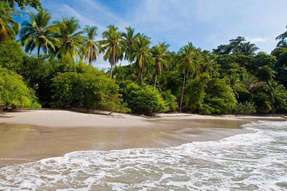 חוף טיפוסי בקוסטה ריקה. מושלם לחופשה רומנטית