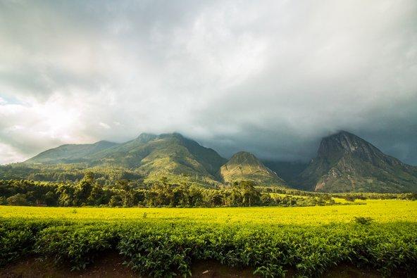הר מולנג'ה, ההר הגבוה במלאווי, אשר פסגתו מכוסה תדיר בעננים