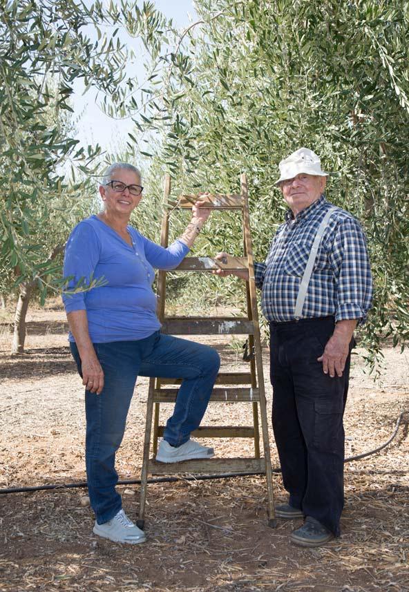 רות ויוסף רוטמן בכרם הזיתים שלהם