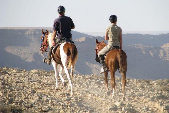 טיולי סוסים: המקומות היפים בארץ