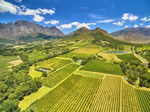 נופי כרמים והרים בחבל היין בדרום אפריקה