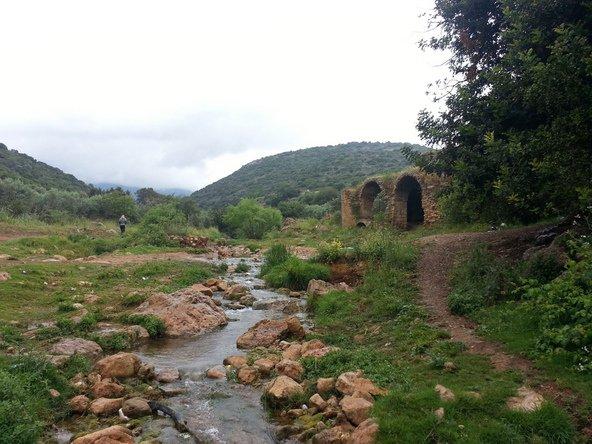 מים, שרידי טחנות קמח והרבה ירוק בנחל צלמון