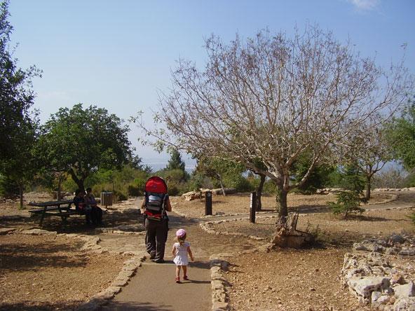 פארק אדמית, ממנו מתחיל מסלול הטיול בנחל נמר