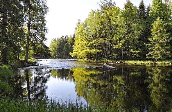 באזורים הלא מיושבים, הטבע השוודי שומר על צביונו המיוחד