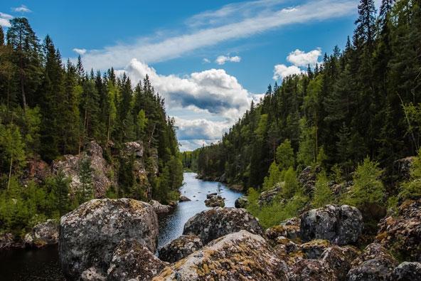 טיול לשוודיה: יפהפייה צפונית
