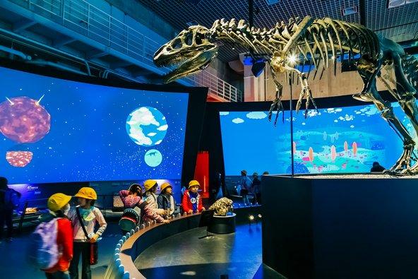מוזיאון הטבע והמדע בטוקיו | צילום: cowardlion / Shutterstock.com